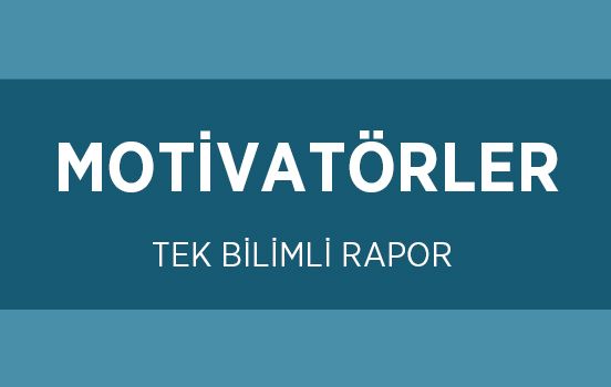 MOTIVATORS PROFILE