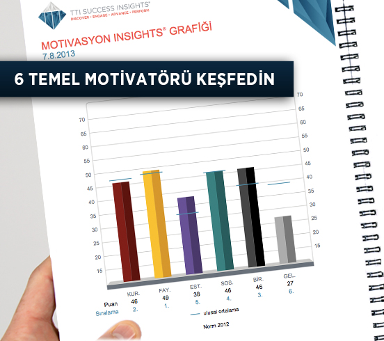 Motivators Profile - TTI Success Insights