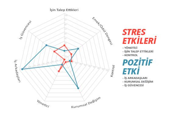 STRES_ETKILERI